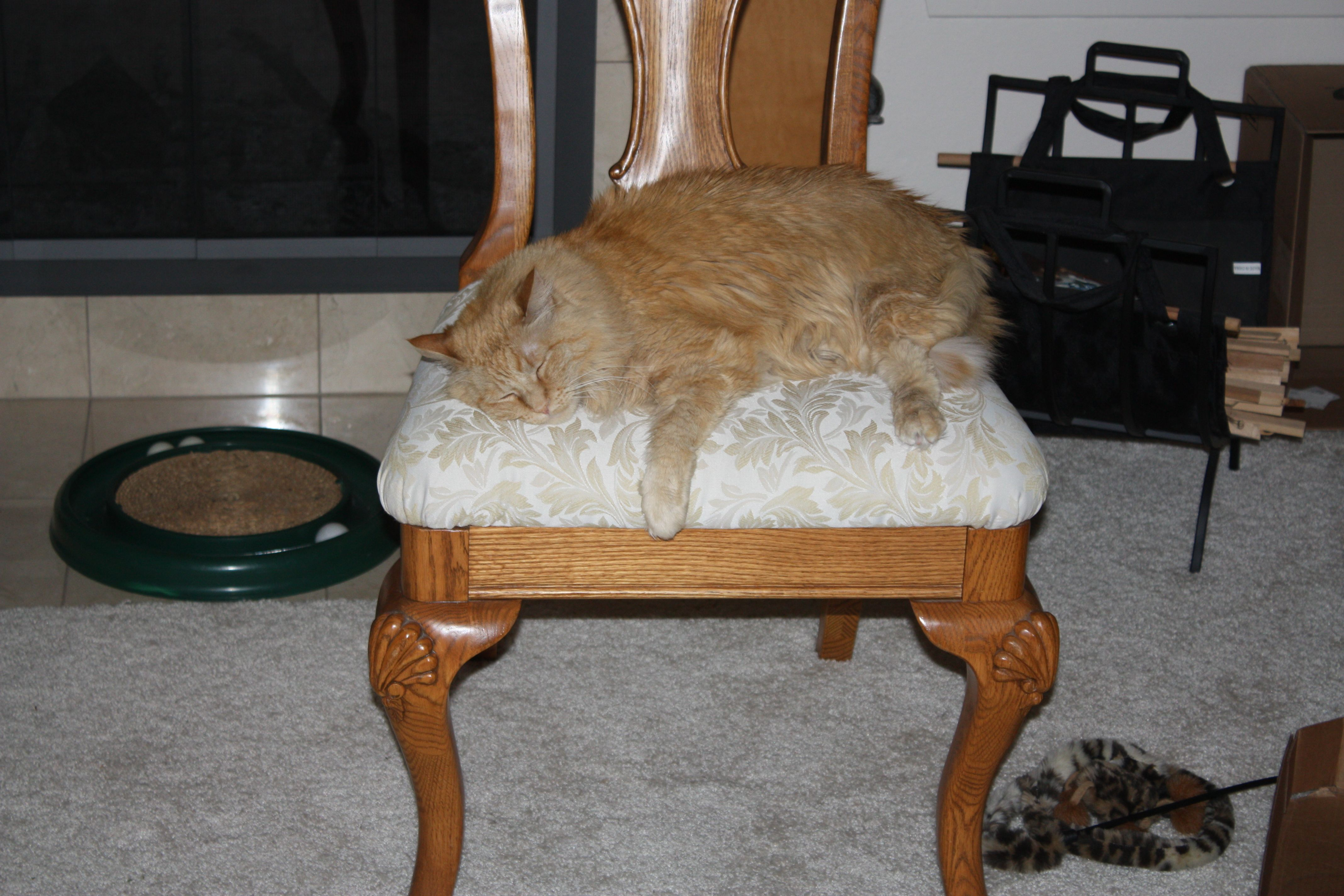 pekoe_chair